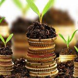 Bonus investimenti anche per società di comodo e affitti d'azienda